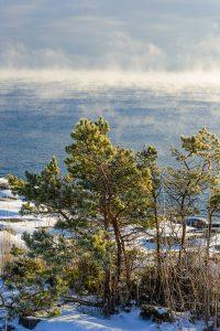 By Arild Vågen - Flickr: Utö, January 2013 IV, CC BY-SA 2.0,